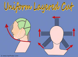 trimming hair angle cut to cut a uniform layered haircut
