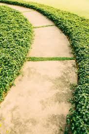 Cover Concrete With Pavers by 35 Gorgeous Garden Pathways To Tiptoe On Garden Lovers Club