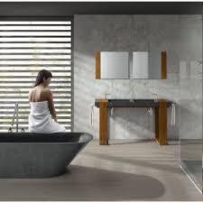 Guest Bathroom Shower Ideas Bathroom Handicap Bathroom Designs Fantastic Bathroom Design A