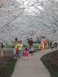 Arboretum by University Of Illinois Arboretum Enjoy Illinois