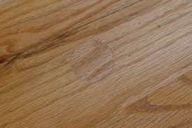 Laminate Floor Repair Kit Laminate Floor Floor Repair Kit Best Quotes Of The Day
