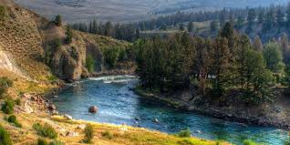 Montana Rivers images Fly fishing on yellowstone river destination montana jpg