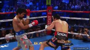 Pacquiao Knockout Memes - pac man goes down gifulmination