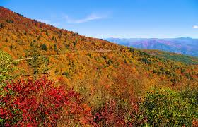 scenic fall drives north carolina mountains u2013 asheville nc