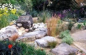 Rock Garden Florida Low Water Landscaping Plants Ornamental Grasses In A Planting