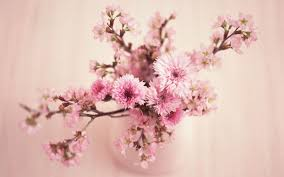 cherry flowers wallpapers vintage flowers wallpapers reuun com