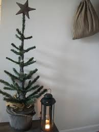 trees for cheap decor ideas