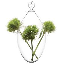 Wall Mounted Glass Flower Vases Unique Clear Glass Vases Clear Glass Planters Chive Chive