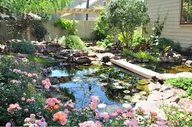Backyard Landscaping Pictures about landscape design houston nature u0027s realm