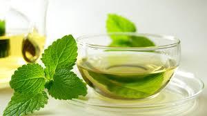 Teh Mint inilah 8 manfaat kesehatan dibalik segarnya air daun mint