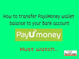 payumoney wallet to bank account transfer youtube