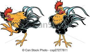 great rooster design for any fight chicken vector clip