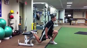 dumbbell single leg squat youtube