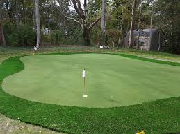 Backyard Putting Green Designs by Backyard Golf Green Crafts Home