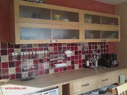carrelage cuisine mural impressionnant modele carrelage mural cuisine pour idees de deco