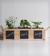 incredible indoor herb garden ideas featuring rectangle shape