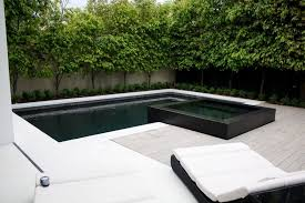 overflowing backyard pool and spa for luxury backyard design ideas