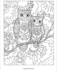 150 best coloriage hibou images on pinterest coloring coloring