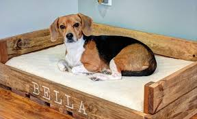 Elevated Dog Beds For Large Dogs Raised Dog Bed For Large Dogs Raised Dog Bed Replacement Cover