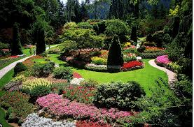 What Does A Landscaper Do by How To Become A Landscape Designer