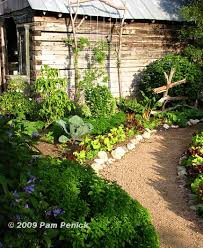 vegetable gardening in san antonio texas best idea garden