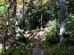 West Virginia nature activities images 104 best hiking trails images hiking trails nature jpg