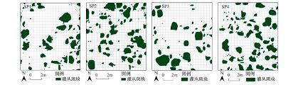 Canap茅 2m 内蒙古典型草原小叶锦鸡儿灌丛化对水分再分配和利用的影响