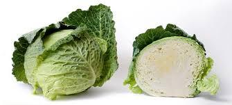 health benefits of cabbage human n health