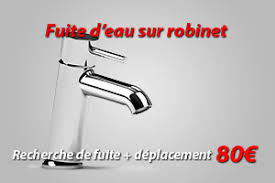 fuite robinet cuisine spécialiste de fuite d eau robinet lyon