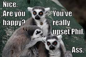 Lemur Meme - angry lemurs thinknsmile com
