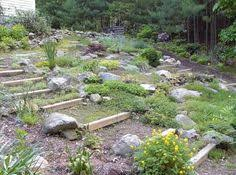 how to create interesting rock garden ideas for small yards yard