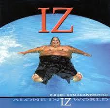 hawaiian photo albums hawaiian pop albums allmusic