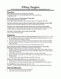 example federal resume gov resume sample business resumes template federal resume gov resume sample business resumes template
