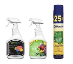 crowning floral spray your finishing spray floralife