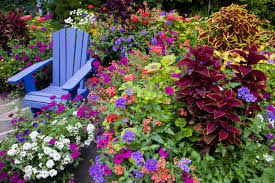 Types Of Garden Flowers - garden ideas landscape for small pictures gallery u2013 modern garden