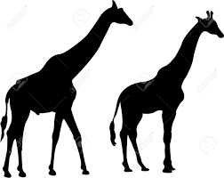 giraffe silhouette royalty free cliparts vectors and stock