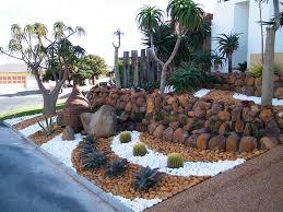 pebble gardens namib garden cactus nursery u2013 garden design