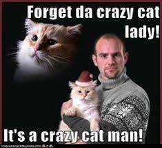 Funny Cat Lady Memes - crazy cat lady meme google search crazy cat ladies pinterest