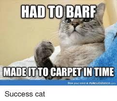 Success Cat Meme - 25 best memes about success cat success cat memes