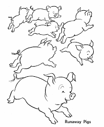 coloring luxury pigs coloring pages pigs coloring