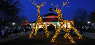 Rosemont Christmas Lights Chicago Zoological Society Brookfield Zoo Home