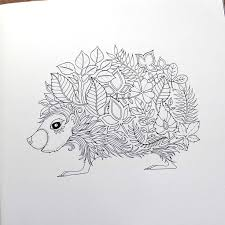 22 colouring images coloring books drawings