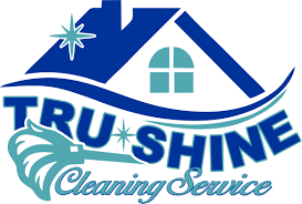 raleigh home cleaning services nc residential cleaning