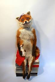 Stoned Fox Meme - adele morse taxidermist artist creator of stoned fox home