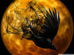 mystical halloween background halloween raven hd desktop wallpaper widescreen high