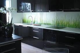 Cooktop Kitchen Modern Kitchen Design Black Cabinets Electric Cooktop Under