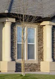 Decorative Concrete Pillars Foam Design Center Columns