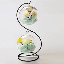 compare prices on hanging glass and metal terrarium online