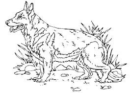 index of coloriage animaux domestique chien