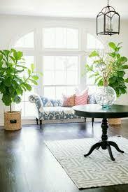17 best bocaux images on pinterest flowers plants and air plants